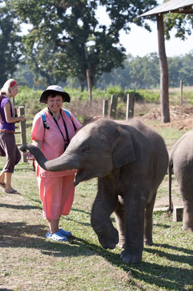 Chitwan Safari - 2 Nights 3 Days